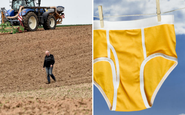 Why are French farmers burying their underpants?