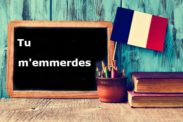 French Expression of the Day: Tu m'emmerdes
