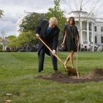 Macron offers Trump replacement 'friendship' tree
