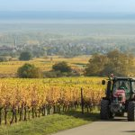 The jobs you can do if you live in deepest rural France
