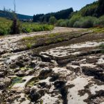 Drought alerts in France: Here's what you can do to save water