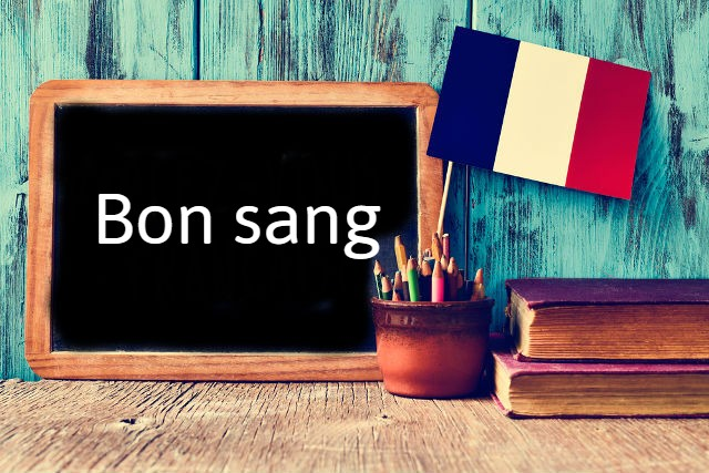 French Phrase of the Day: Bon Sang