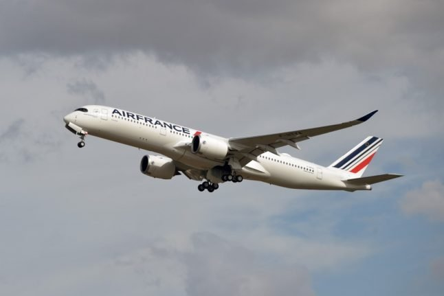 Air France to carbon offset its flights in multimillion euro green pledge