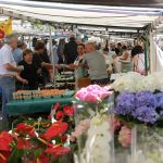 All you need to know about shopping at French food markets
