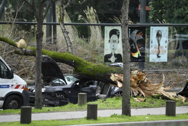 Man killed by falling tree as record-breaking winds hit Paris