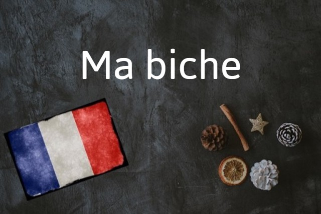 French word of the day - Ma biche