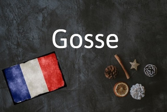 French word of the day: Gosse