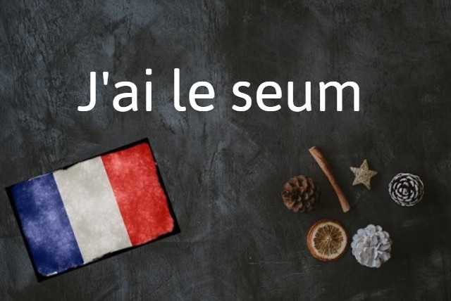 French expression of the day: J'ai le seum