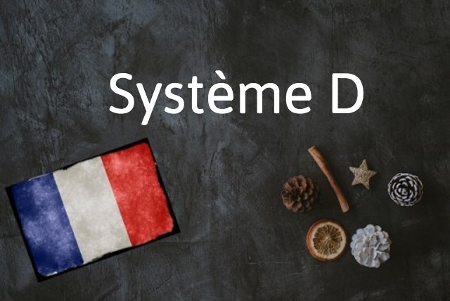 French word of the day: Système D