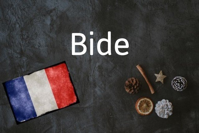 French word of the day: Bide