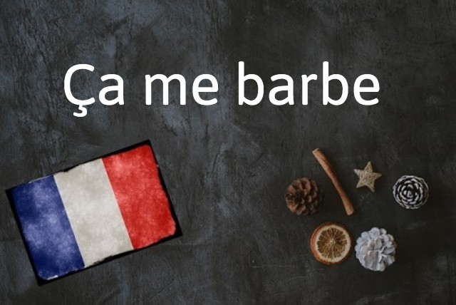 French expression of the day: Ça me barbe