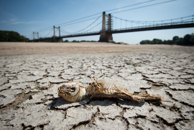 Forecasters predict another long, hot and dry summer in France