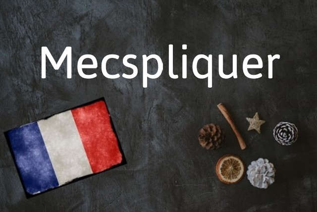 French word of the day: Mecspliquer