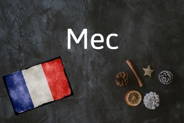 French word of the day: Mec