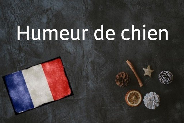 French expression of the day: Humeur de chien
