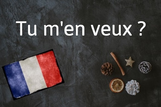 French expression of the day: Tu m'en veux ?
