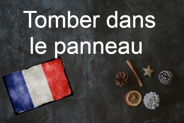 French expression of the day: Tomber dans le panneau