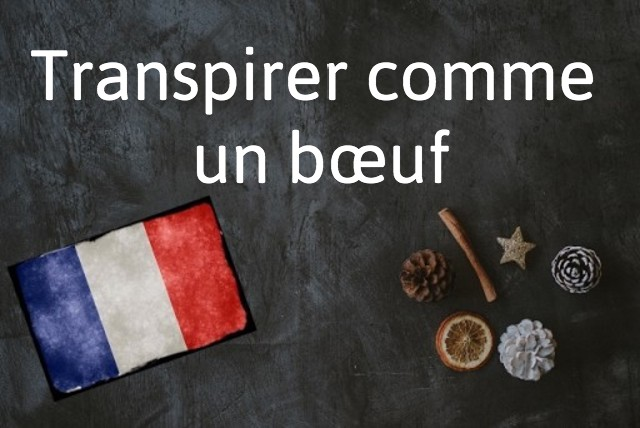 French expression of the day: Transpirer comme un bœuf