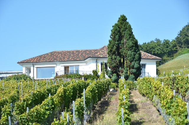 What you need to think about before buying that dream house in France