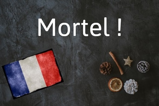 French word of the day: Mortel