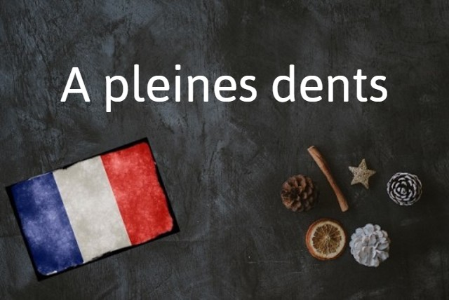 French expression of the day: A pleines dents