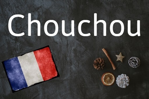 French word of the day: Chouchou