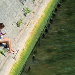 How plans are progressing in Paris to make the Seine safe for swimming by 2024
