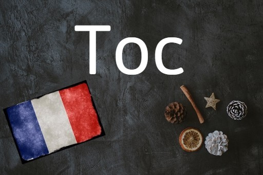 French word of the day: Toc