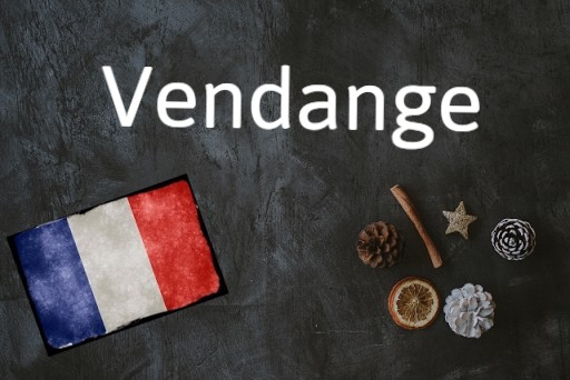 French word of the day: Vendange