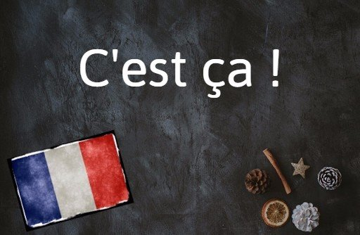 French expression of the day: C'est ça !
