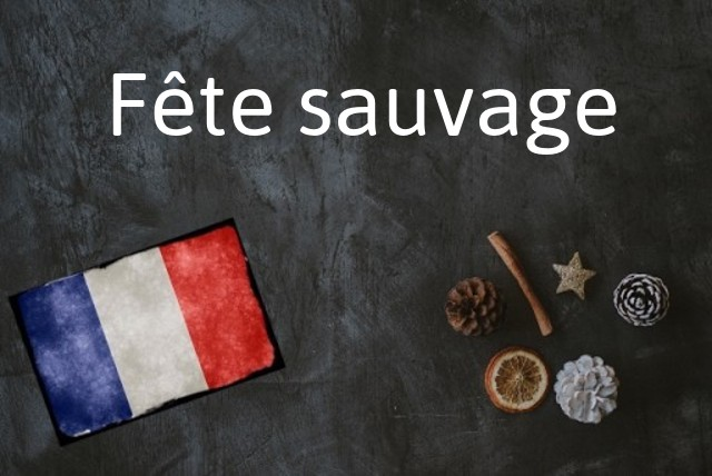 French phrase of the Day: Fête sauvage