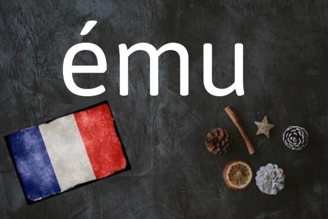 French word of the day: ému