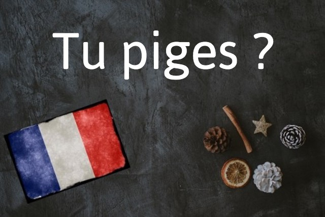 French expression of the day: Tu piges ?