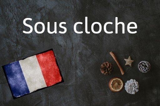 French phrase of the day: Sous cloche