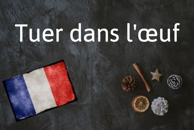 French expression of the day: Tuer dans l'œuf