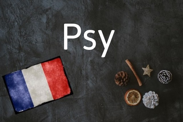French word of the Day: Psy