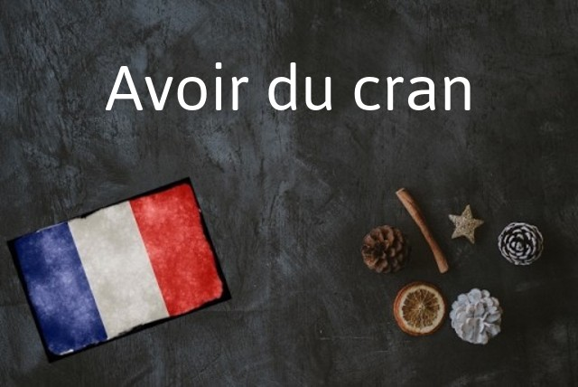 French phrase of the day: Avoir du cran