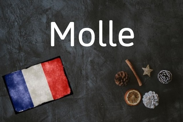 French word of the day: Molle