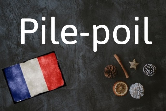 French word of the day: Pile-poil