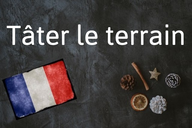 French expression of the day: Tâter le terrain
