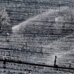 French winemakers count cost of 'worst freeze in decades'