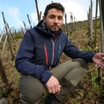 'We've lost at least 70,000 bottles' - French winemakers count the cost of late frosts