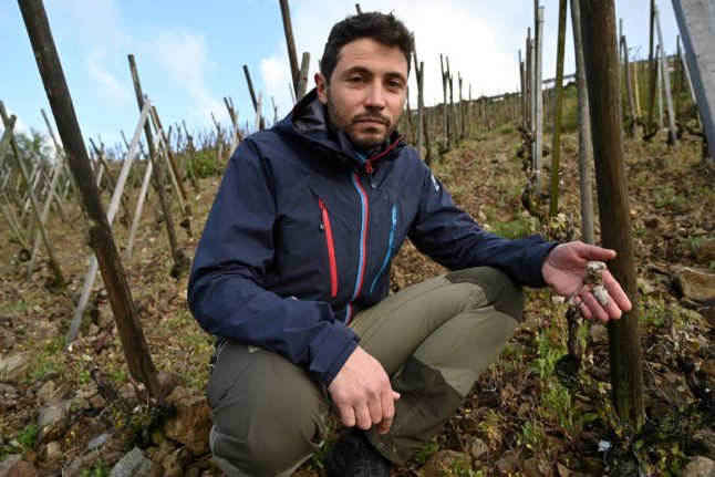 'We've lost at least 70,000 bottles' – French winemakers count the cost of late frosts