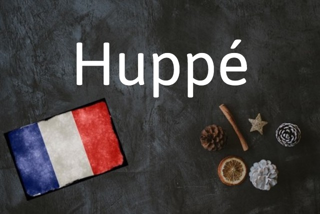 French word of the day: Huppé