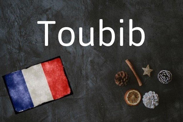 French word of the Day: Toubib