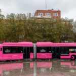 Where in France can you travel on public transport for free?