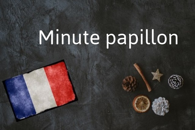 French word of the Day: Minute papillion