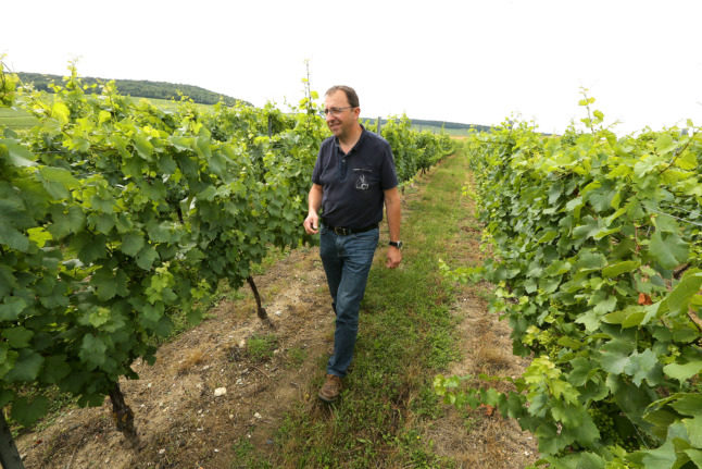 Why French Champagne growers are scrapping a 100-year-old rule