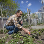 How you can get a garden in France if you live in a city