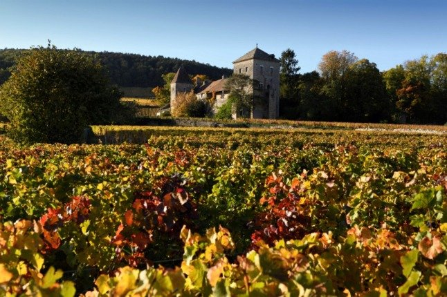 Why France's Burgundy vineyards are more vulnerable to extreme weather